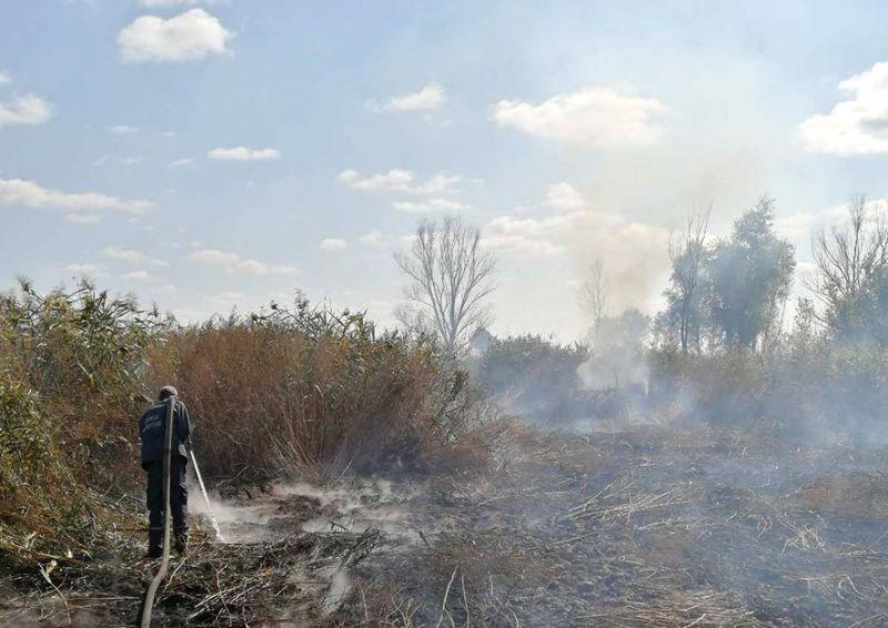 У Глобинському районі ліквідовують торф'яну пожежу / Центральний